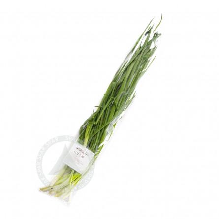 Купить Лук Зеленый 100г Пакет с доставкой на дом в магазине SPAR